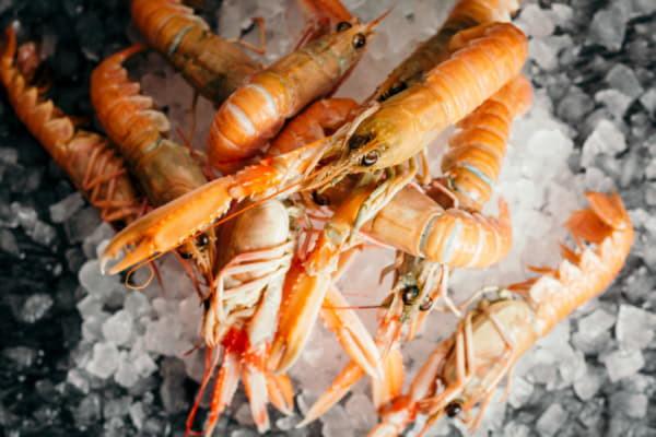 Свіжа риба та морепродукти